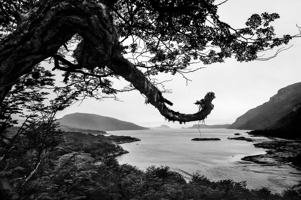 A stark view south from Tierra del Fuego National Park, Argentina at the bottom of South America.