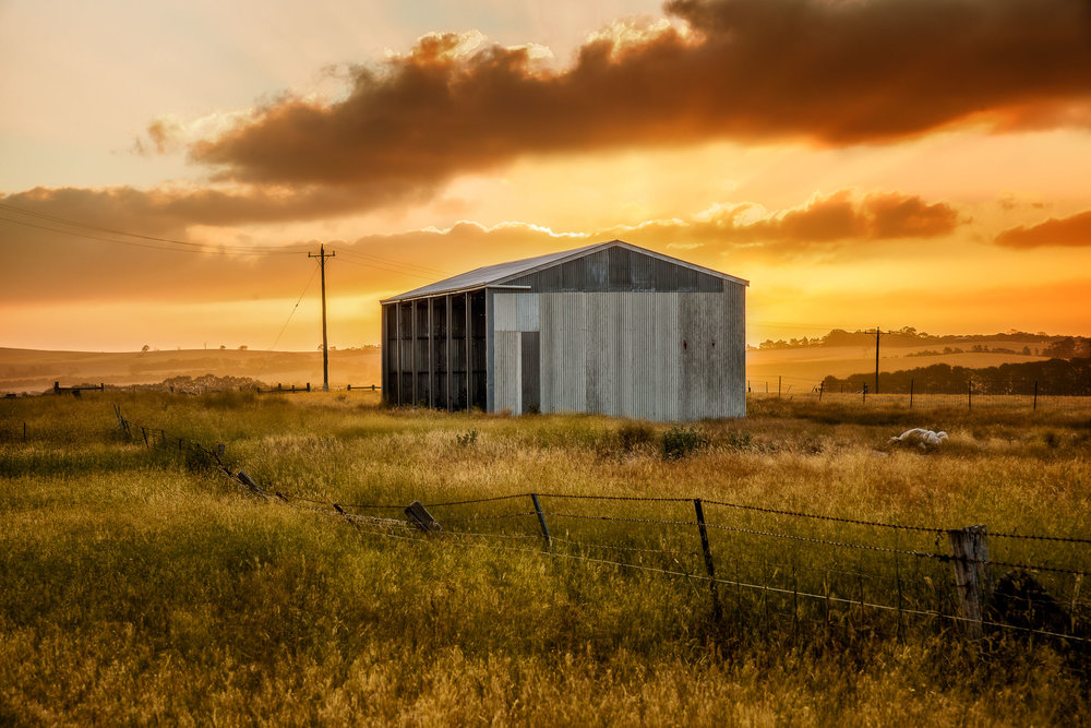 Farm shed and surrounding fields illuminated by the warm glow of sunset in Western Victoria, Australia