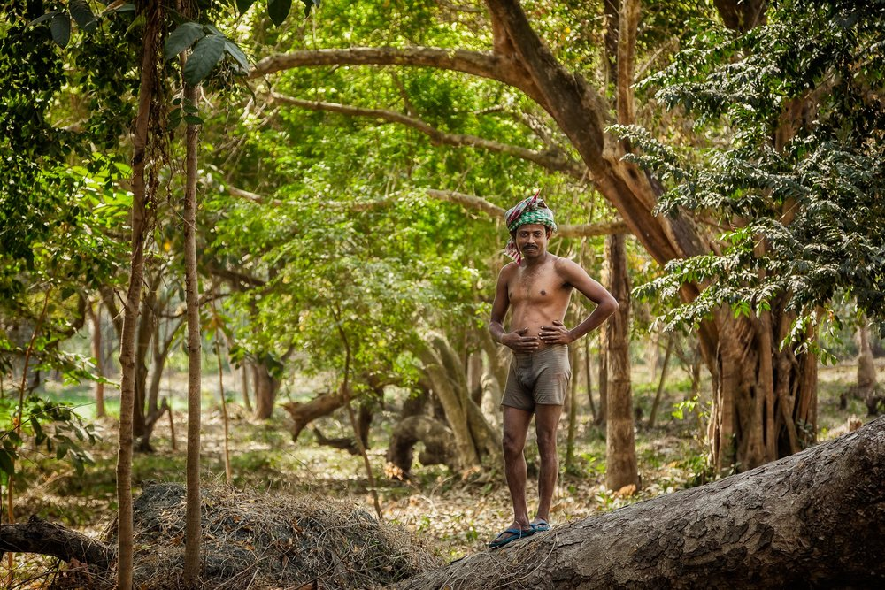 I photographed this    worker    in the grounds of the lovely    Botanical Gardens    in    Kolkata, India   .