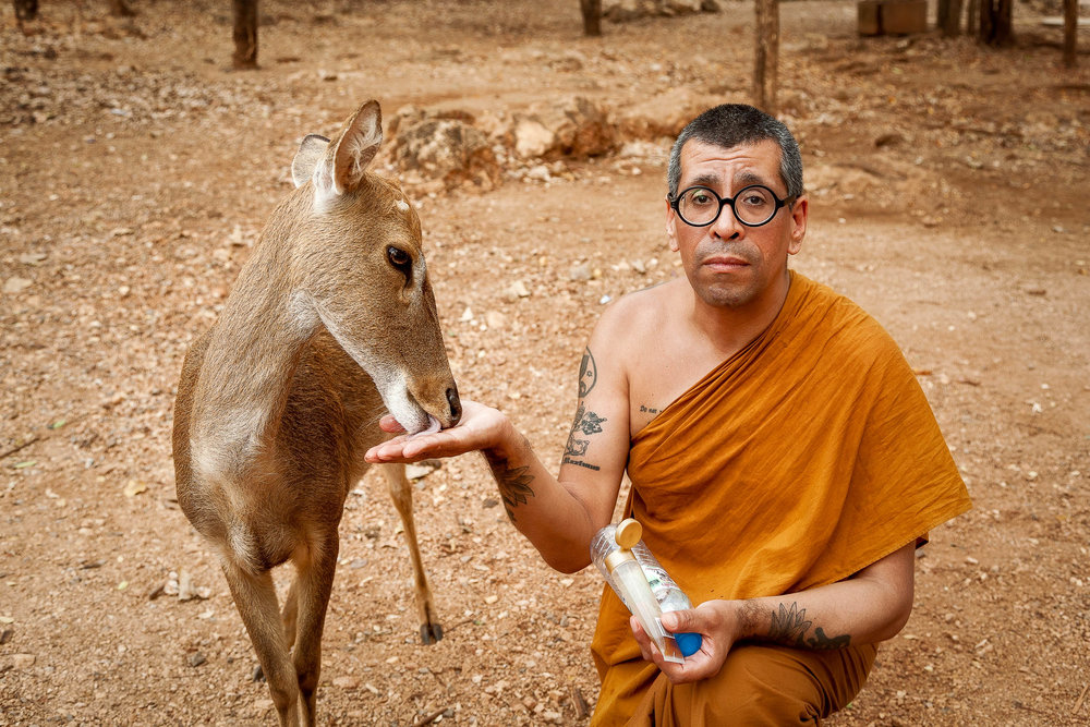 A well-meaning monk feeding a deer at the Tiger Temple in Thailand.