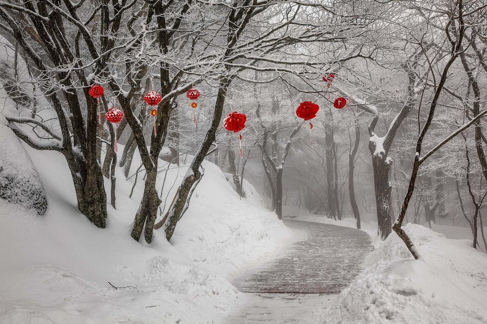 Red decorations, in an otherwise monochromatic landscape, greet the tired, cold walker on Huangshan (i.e., Yellow Mountain) in China.