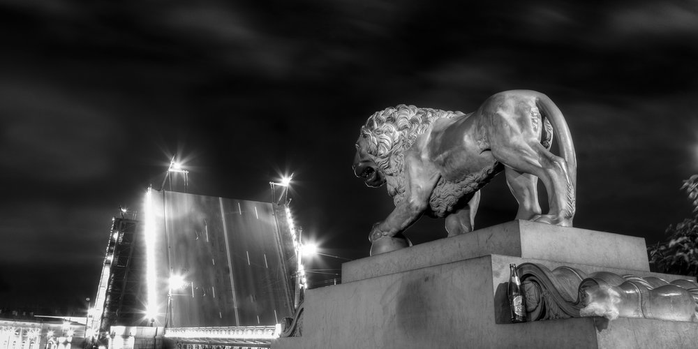 Lion and Palace Bridge at Night, St. Petersburg, Russia