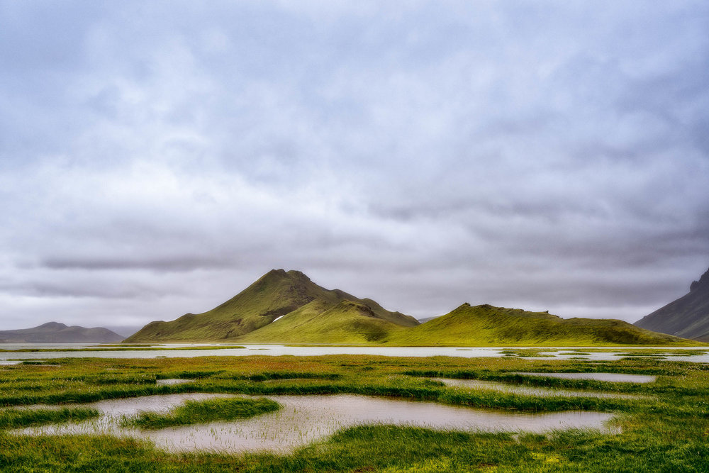 Marshy lake country in southern Iceland illuminated by warm, atmospheric light.