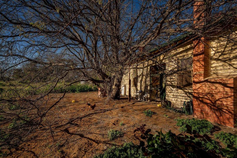 Backyard, Cowangie, Australia