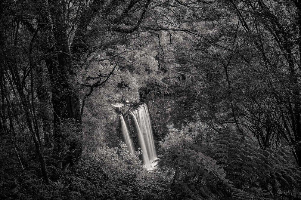 Lookout, Erskine Falls, Great Otway National Park