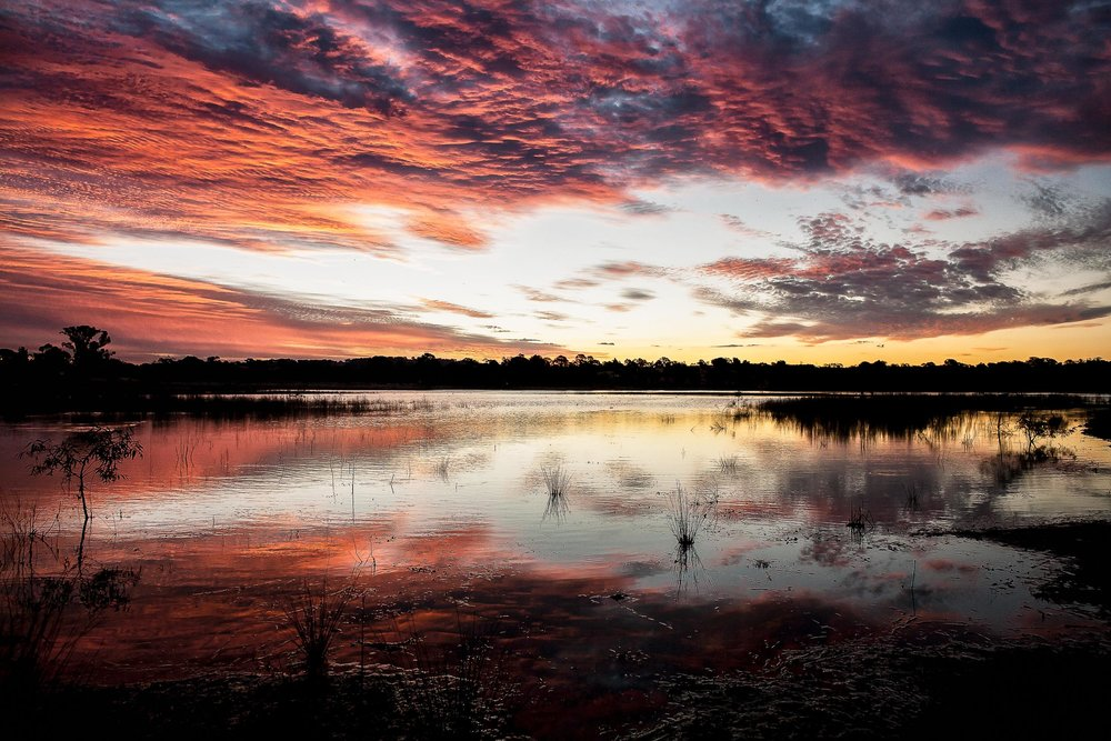 Sunset, Harcourt Reservoir, Australia