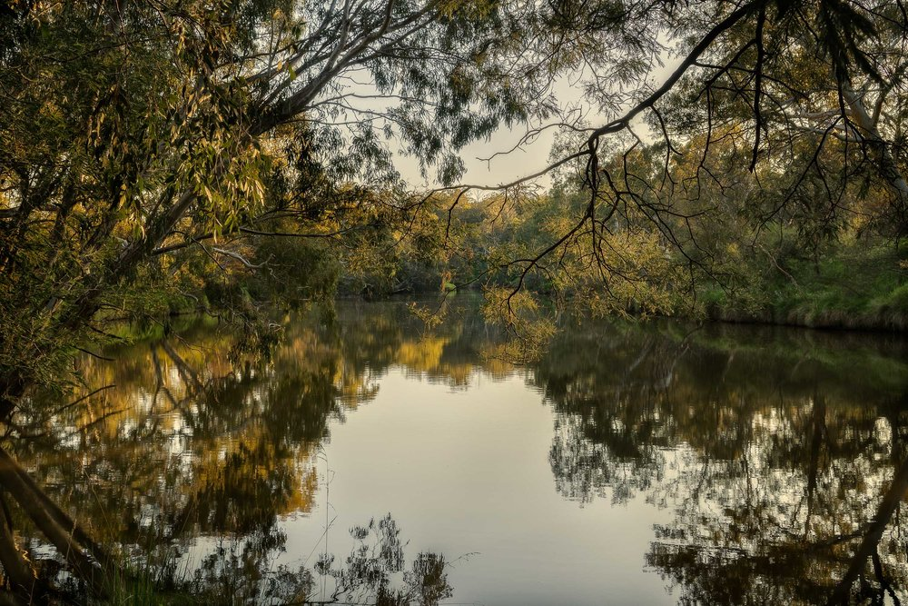 Quiet Light, Yarra River, Fairfield, Australia