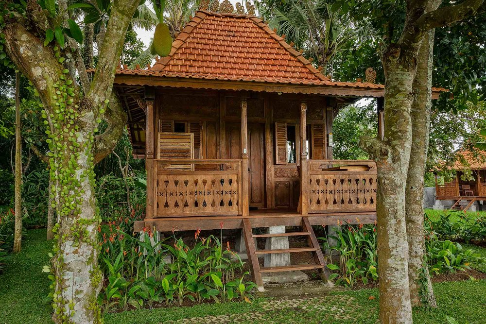 Kajane Mua  is a low to mid price accommodation option in  Ubud, Bali . This photo features one of their delightful  free standing bungalows , on the edge of the  paddy fields .