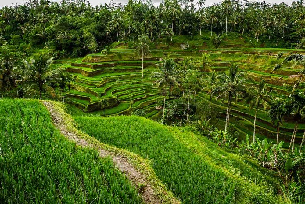Bali, Indonesia -