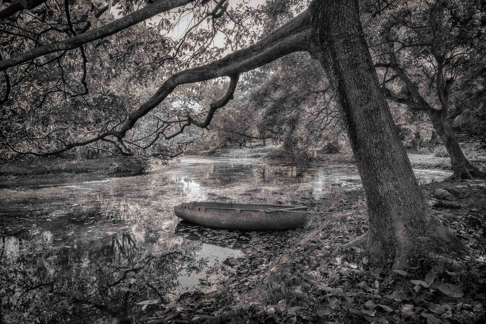 An    old boat    in the grounds of the    Botanical Gardens    in    Kolkata, India    makes for a very idyllic, pictureseque image.