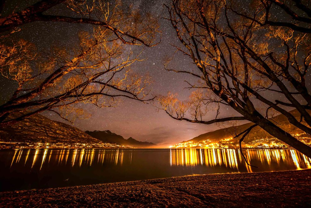 Artificially illuminated trees and a    star filled night sky    over    Lake Wakatipu    in    Queenstown, New Zealand   .
