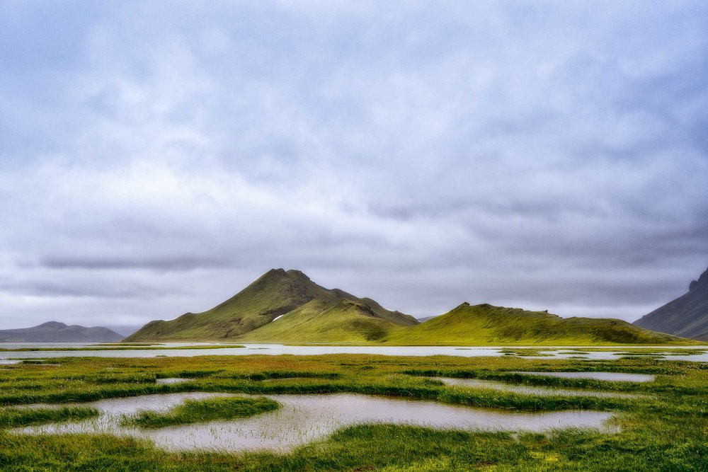 Marshy    lake country    in Southern    Iceland    illuminated by    warm, atmospheric light   .