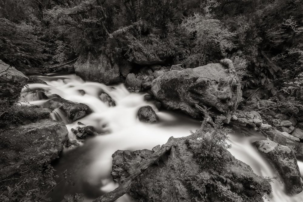 A fast flowing creek near    Milford Sound    on the South Island of    New Zealand   .