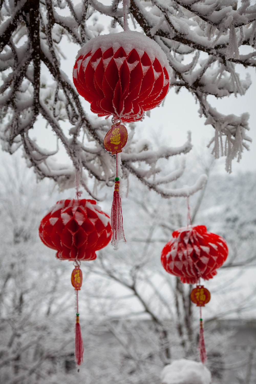 Red decorations    in the snow welcome the visitor outside a hotel on    Huangshan    (i.e., Yellow Mountain) in    China   .