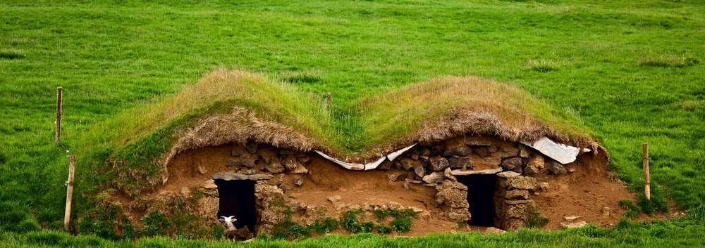 A    sheep   , keeping an eye out, rests in a shelter in    rural Iceland   .