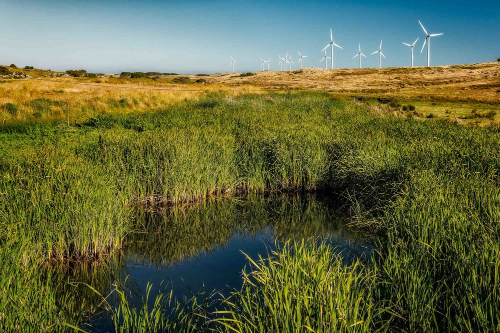 A view across a dam and fields towards    green power generation    on the cliffs at the    Yambuk Wind Farm    in    Western Victoria, Australia   .