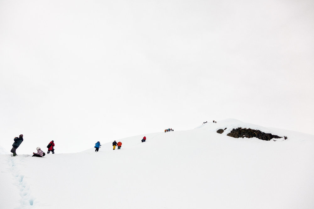Members of the tour group I co-ran to    Antarctica    making the steep climb, thorugh heavy snow, up the hill at    Brown Station   .