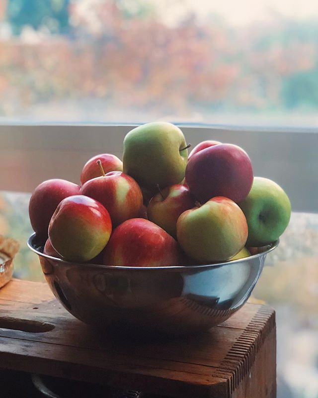 Oh the magic of Fall. 🍁🍎✨ . . . . . #fall #applepicking #appleseason #apples #eatlocal #bake #homemade #juniperfancy
