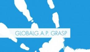 global grasp.jpg