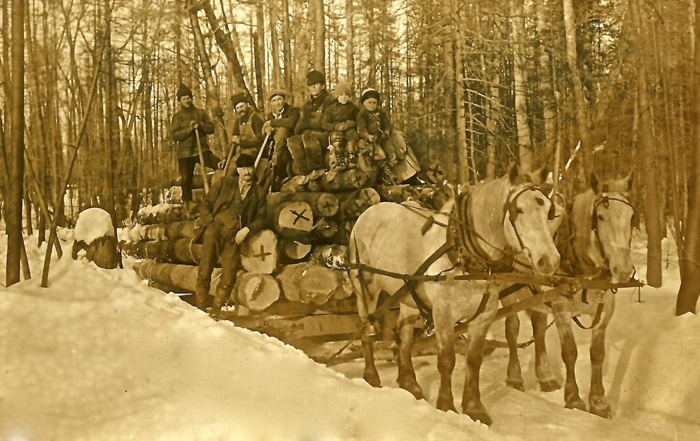 Logging in northern Maine. Courtesy of Paul Marshall.