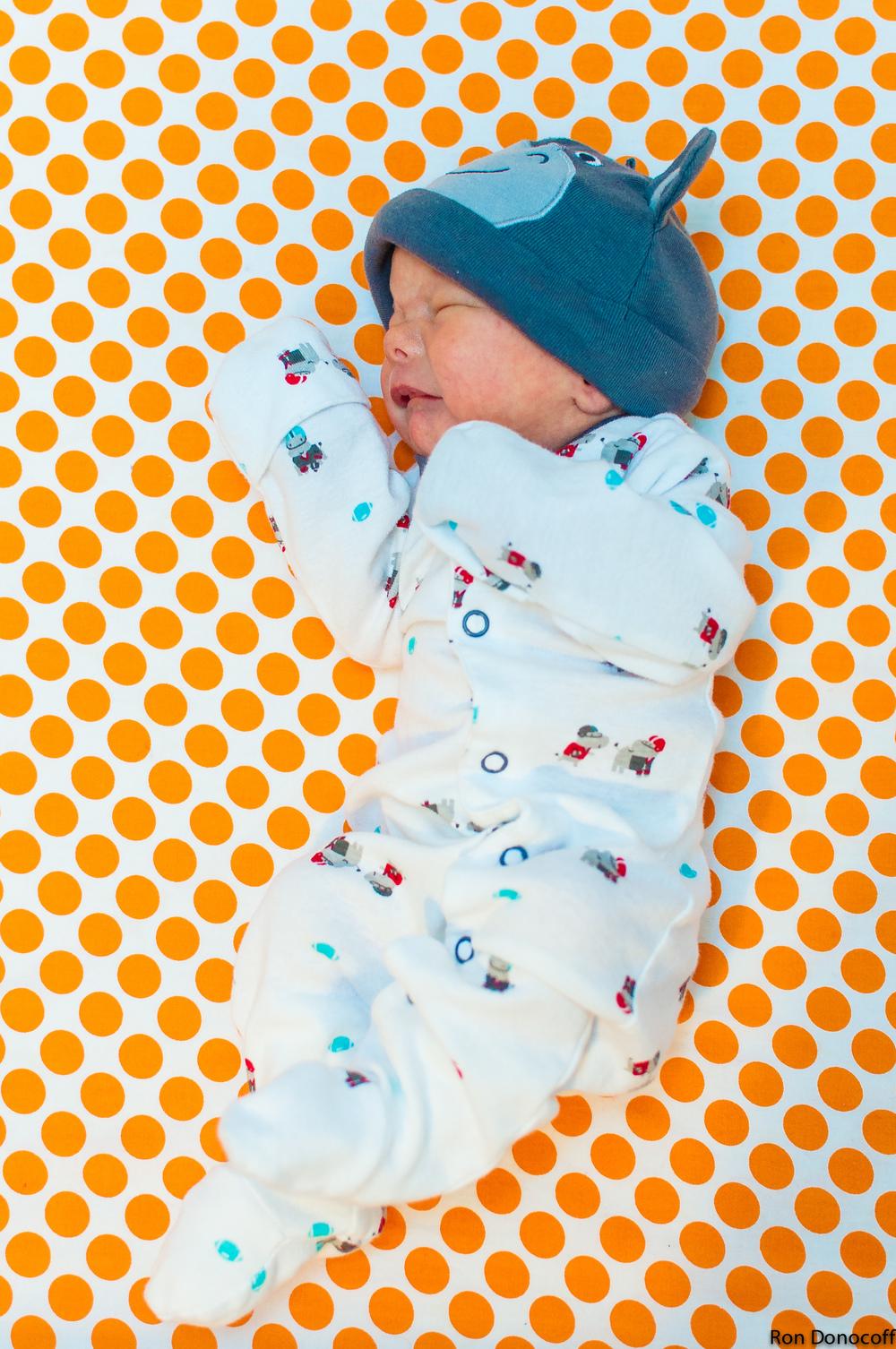 140123 - Baby Frankie-7.jpg
