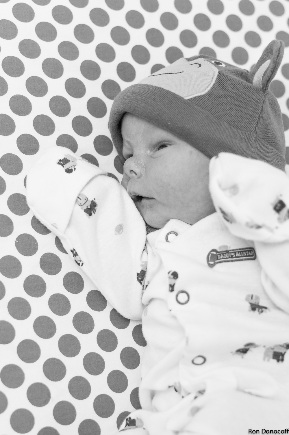 140123 - Baby Frankie-11.jpg