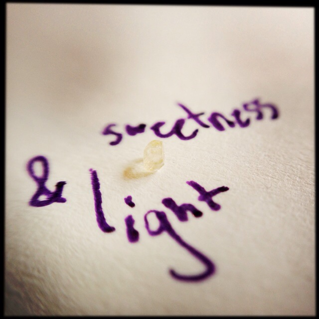 photo - sweetness & light.jpg