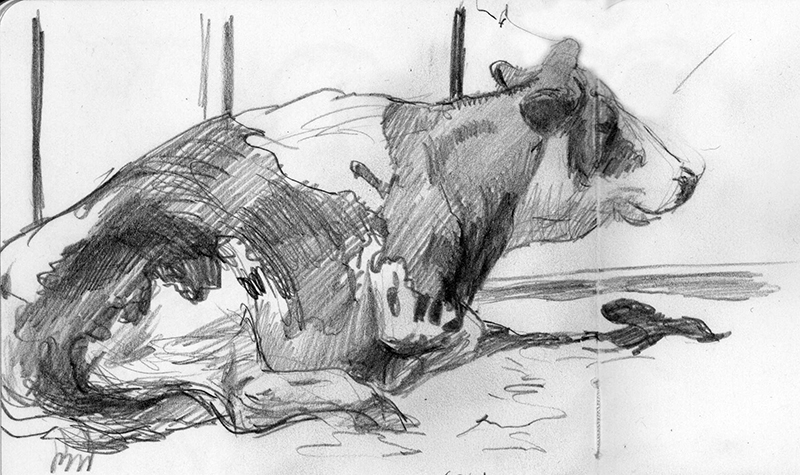 Cow - sketchbook - 2018