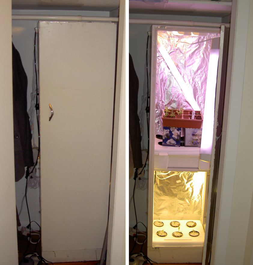 Indoor Hydroponic Grow Closet - A DIY guide to building a easy grow ...