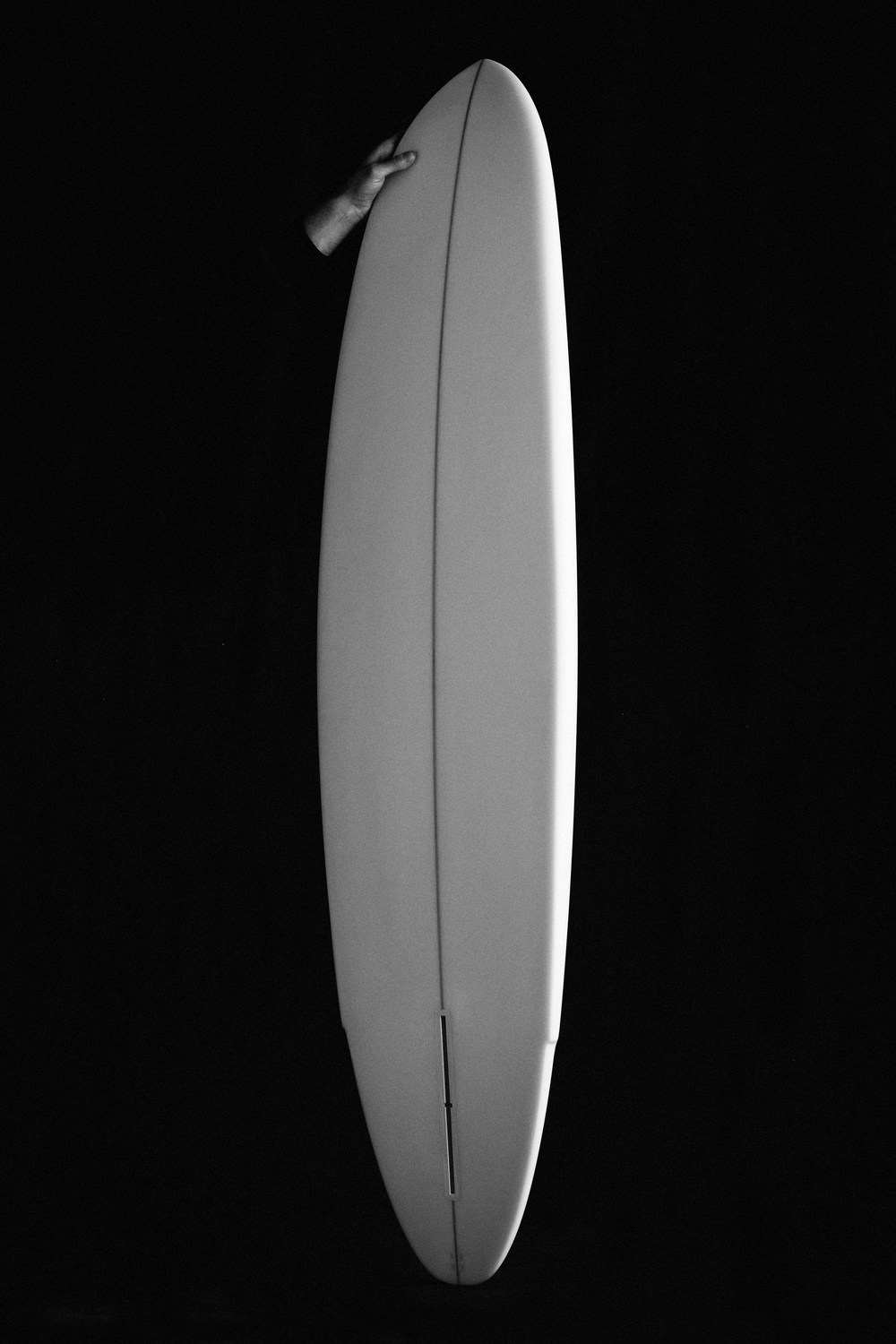 Winged Tiger - Falcone Surfboards - Julien Roubinet 2.jpg