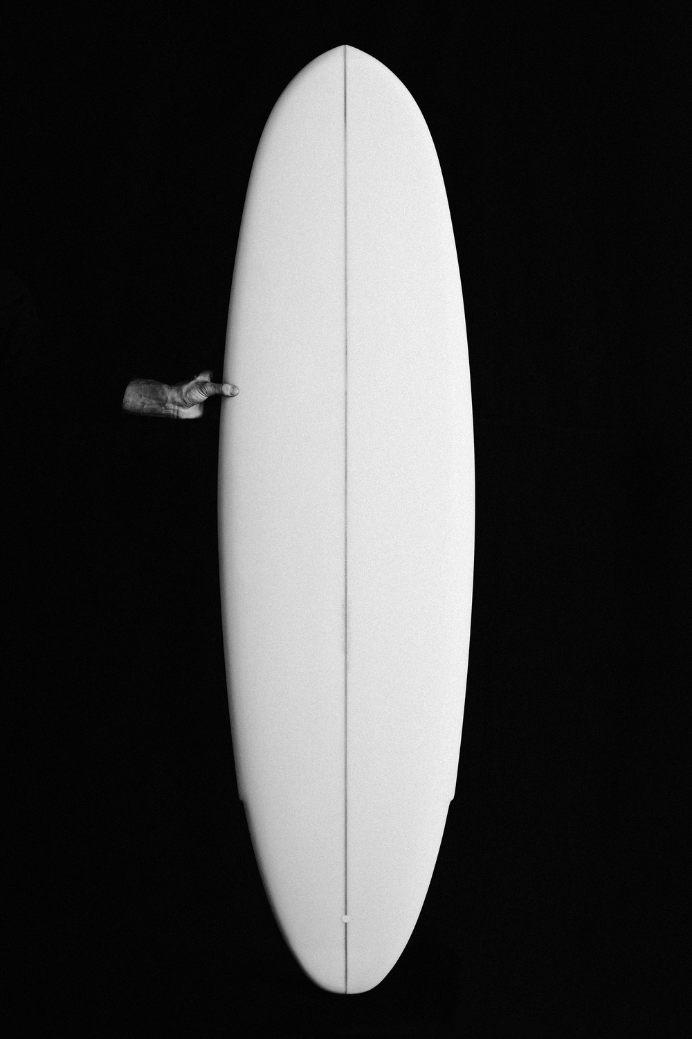 Winged Tiger - Falcone Surfboard - Julien Roubinet 1.jpg