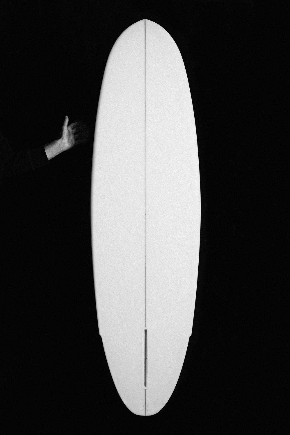Winged Tiger - Falcone Surfboard - Julien Roubinet 2.jpg