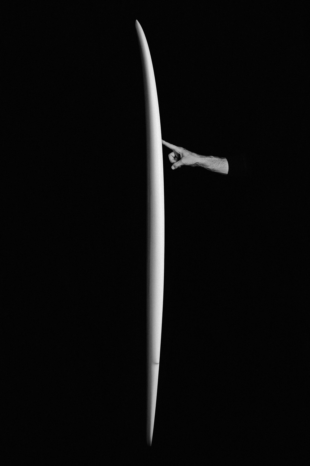 Winged Tiger - Falcone Surfboard - Julien Roubinet 4.jpg