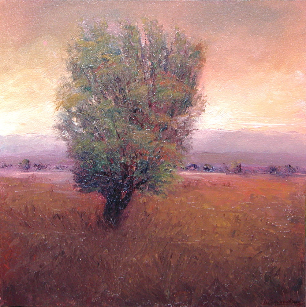 Juniper at Sundown