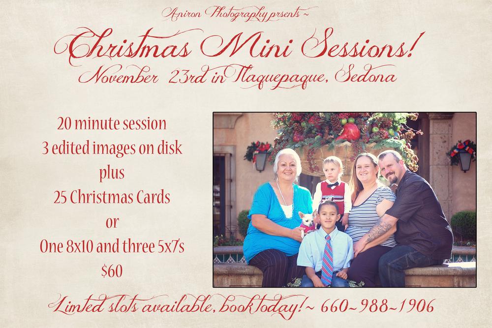 Christmas minis 2013.jpg