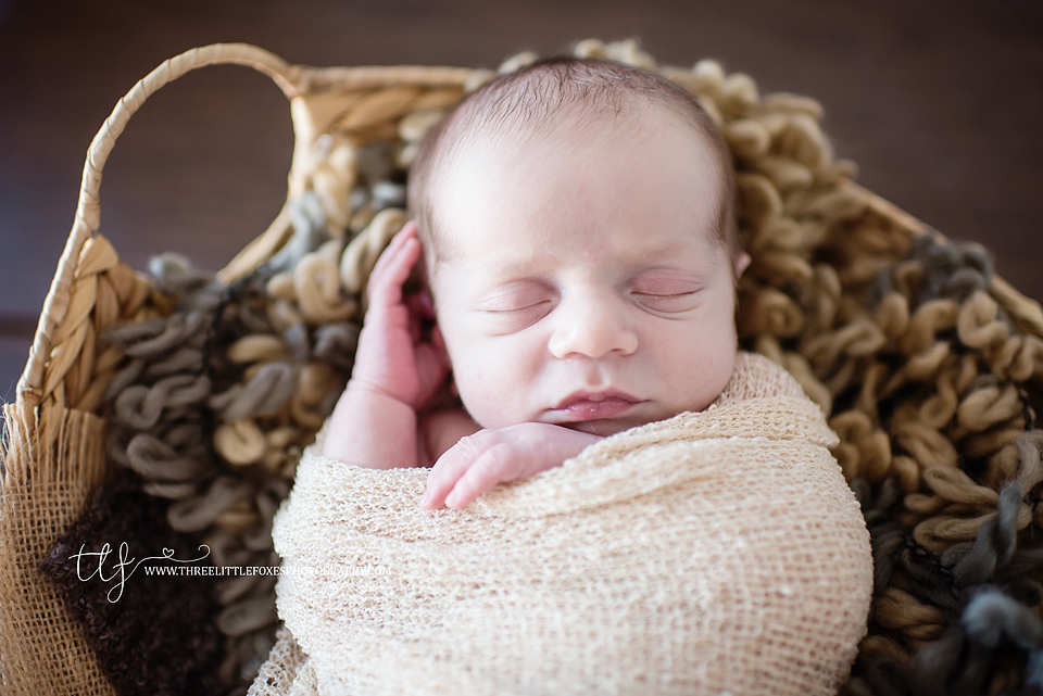 three-little-foxes-photography-columbia-jefferson-city-newborn-photography
