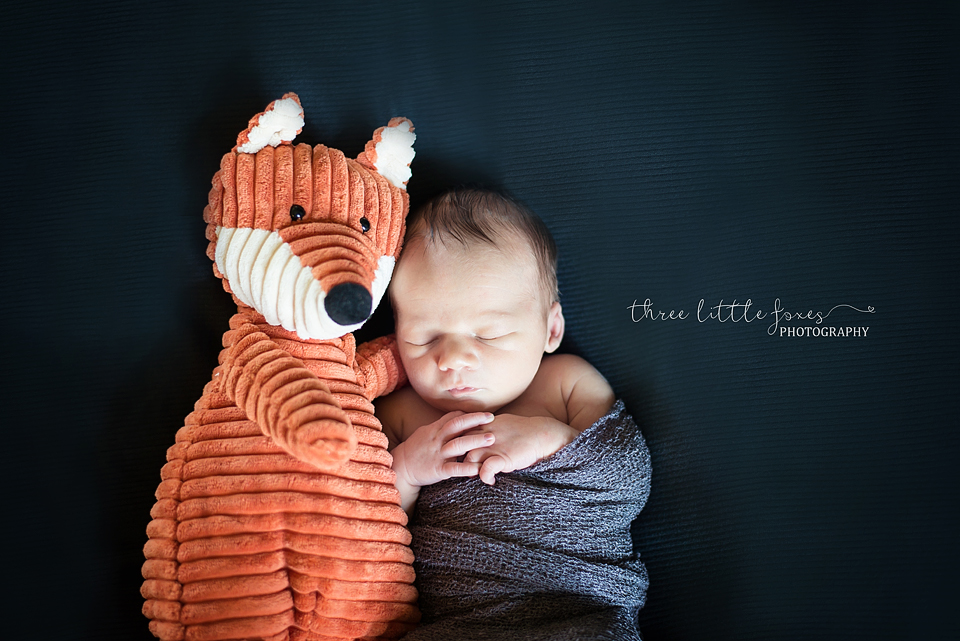 three-little-foxes-photography-columbia-missouri-newborn-photographer-lf