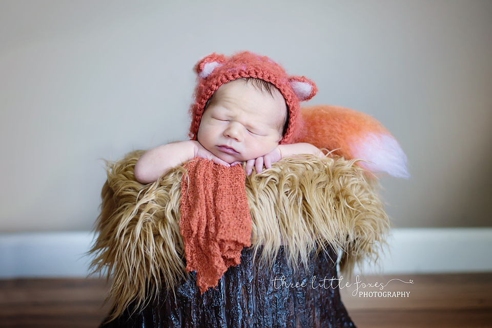 three-little-foxes-photography-columbia-missouri-newborn-photographer-s