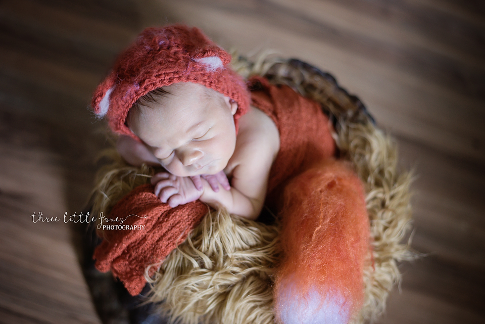 three-little-foxes-photography-columbia-missouri-newborn-maternity-photographer-g