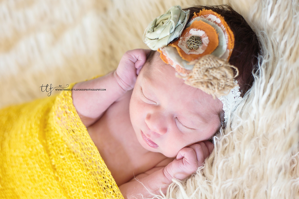 three-little-foxes-photography-newborn-photographer-columbia-missouri