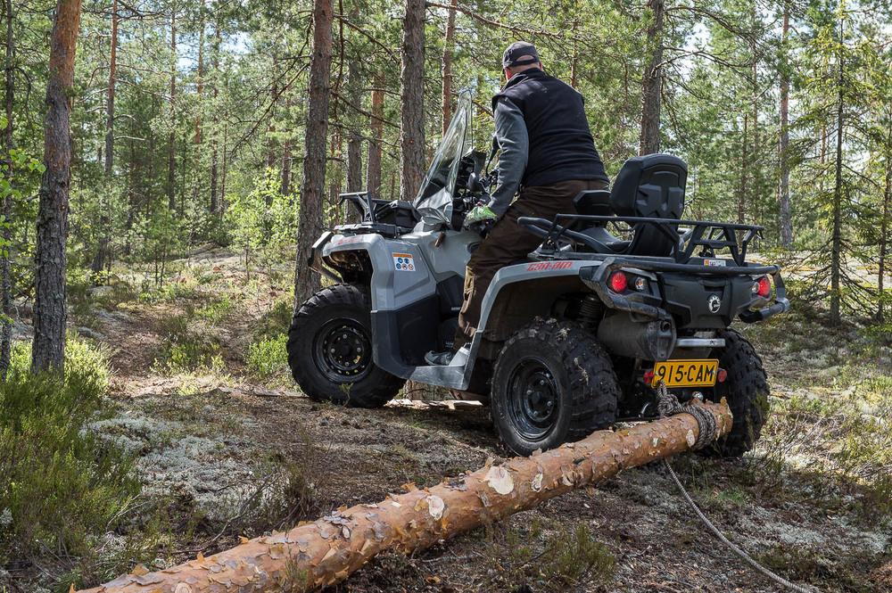 Rakennuspuun vetoa metsässä. Ei kannata pysähtyä ihmettelemään. Kuva Markku Lilja, mlphotic.com