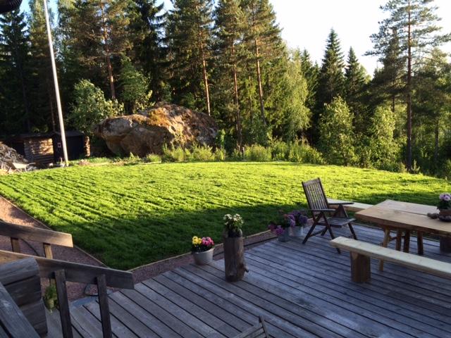 Vasta-ajettu nurmikko tuoksuu.