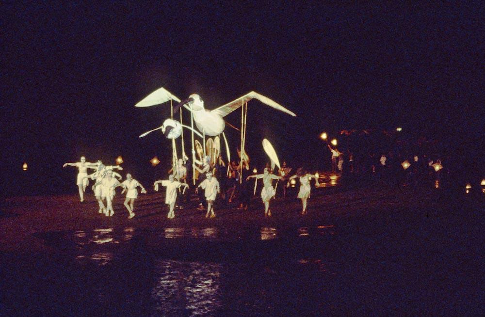 Waderbirds performance under Westgate Bridge Melbourne Australia