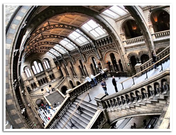 Natural_History_Museum_London_1.jpg