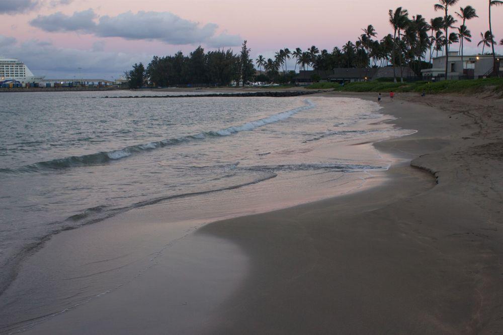 blossomlink.me || Maui, Hawaii