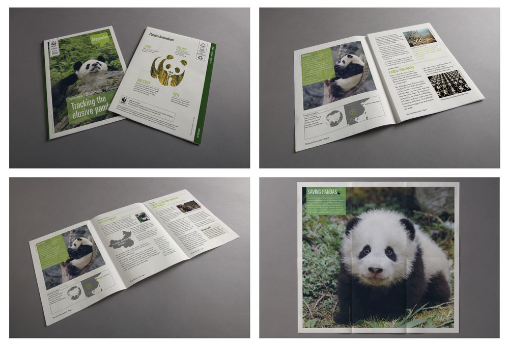 Images of the adoption update for the Giant Panda, including news items, facts, photography and a fold out poster.