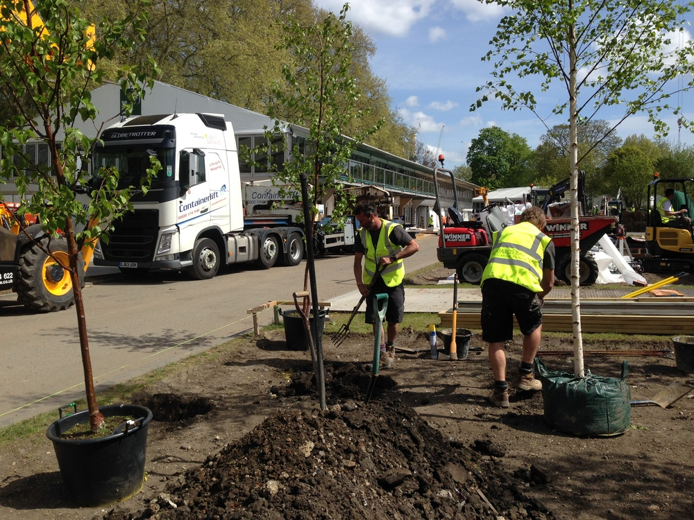 It's the first day on site. The site is being prepared and the trees start to go in. Amazingly the sun is shining...