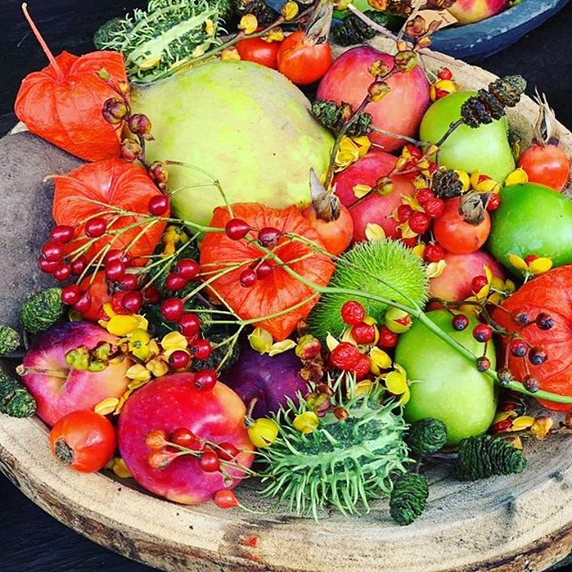 AUTUMN DELIGHTS    beautiful bowl of autumn delights captured in Amsterdam on a recent visit. - Have a lovely weekend. - #susandunstall -