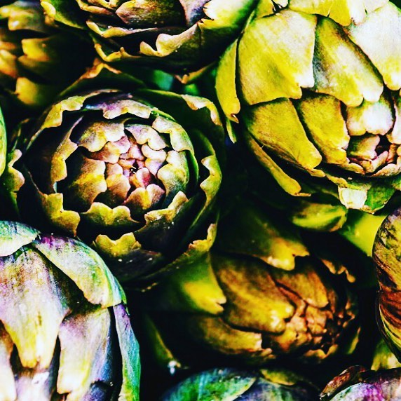 KITCHEN GARDEN    I love designing kitchen gardens - healthy living using delicious edible plants. - The Artichoke is part of the thistle family. - #susandunstall #linkinbio -