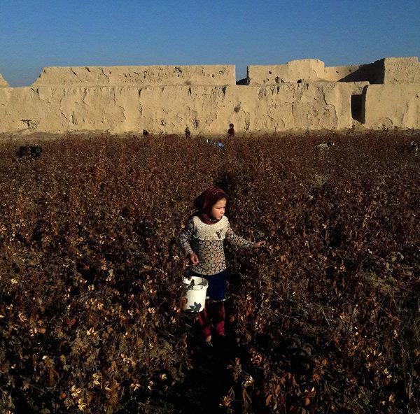 11Afghanistan7-articleLarge.jpg